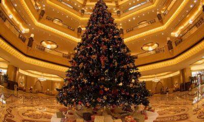 Happy Christmas day